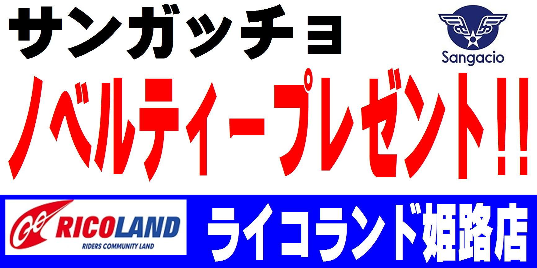 インフォサンガッチョノベルティー.JPG