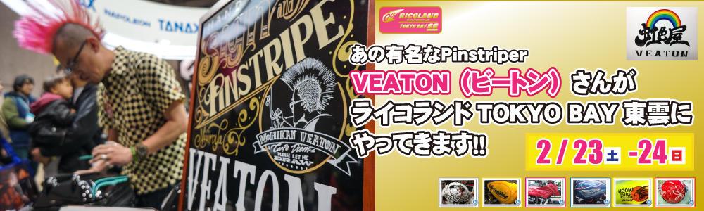 0223ビートンさん文面TOP.jpg