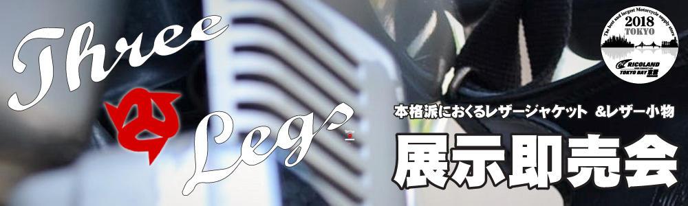 20180218スレーレッグス文面TOP.jpg